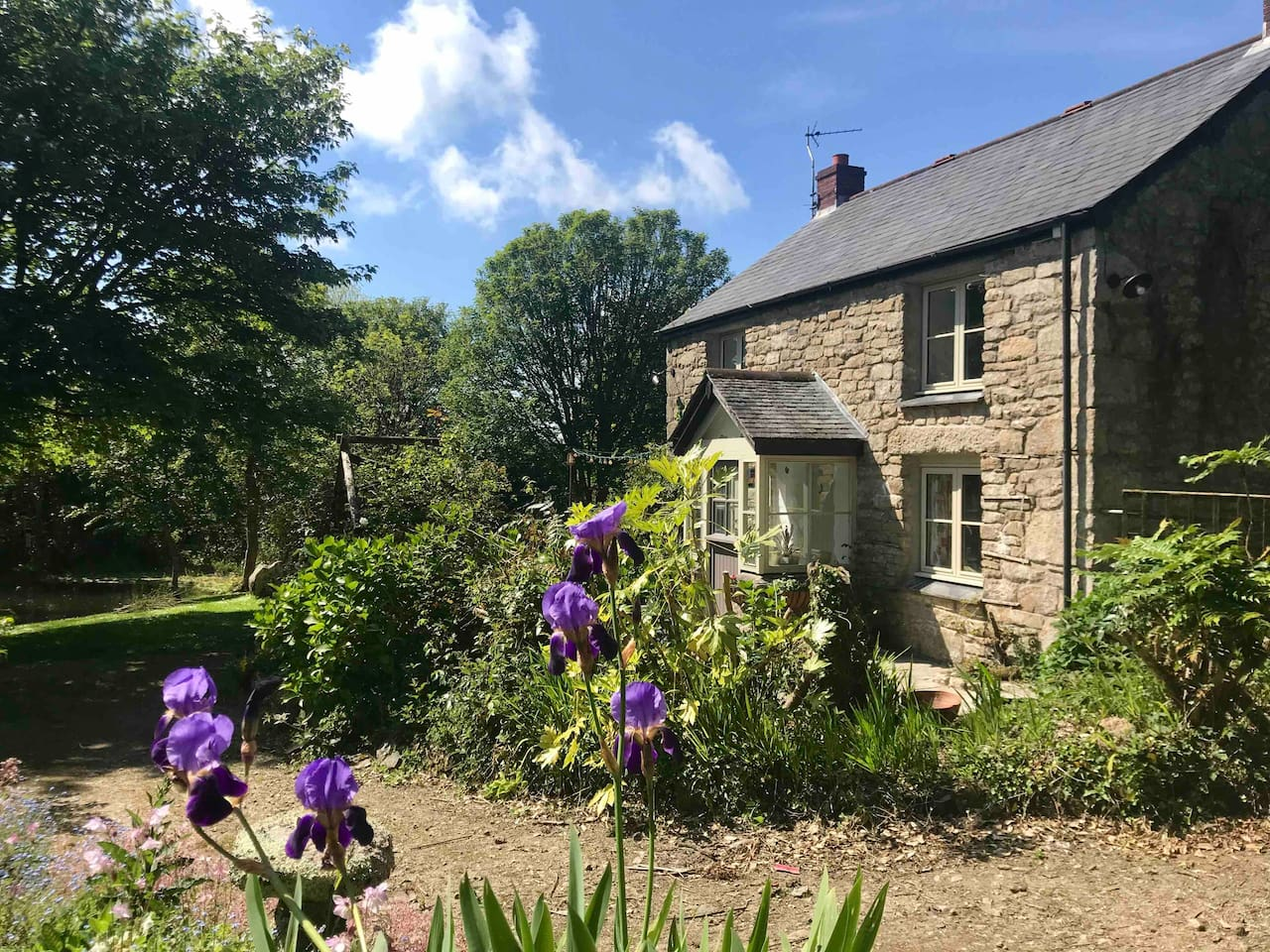 best airbnbs in cornwall, best airbnb in cornwall